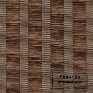 111 Sumatra tigrovij-glaz b