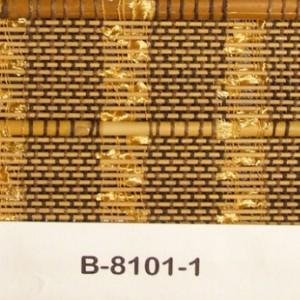 b-8101-1