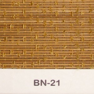 bn-21