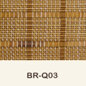 br-q03