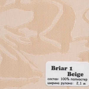 BRIAR 1
