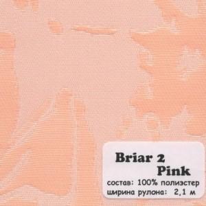 BRIAR 2