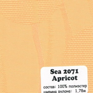 SEA 2071 APRICOT