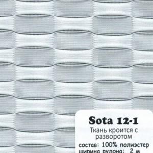 SOTA 12-1