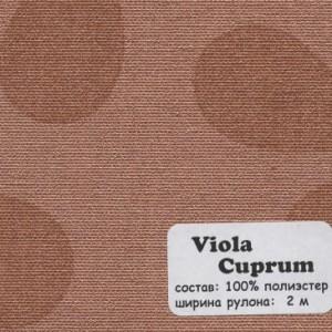 VIOLA CUPRUM